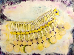 Bonded, watercolour on paper, 63x83 cm, 2016